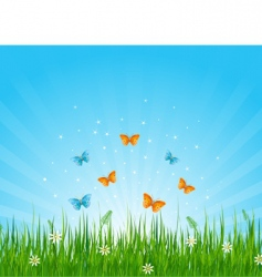 grassy field and butterflies vector image vector image