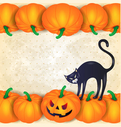 halloween background with pumpkins black cat and vector image