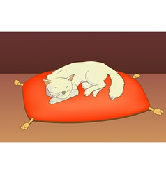 cat on pillow vector image