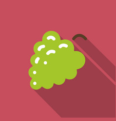 bunch grapes flat icon with shadow vector image