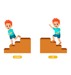 Example opposite adjectives word for kids vector