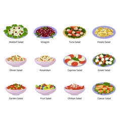 salad healthy food with fresh vegetables vector image