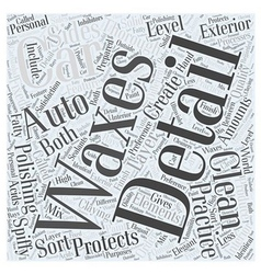 Spiffy Clean with Auto Detailing Word Cloud vector