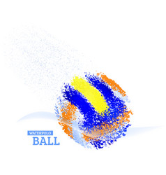 Water polo ball vector
