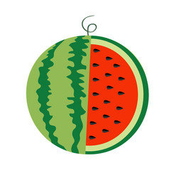 Watermelon whole ripe green stem icon slice cut vector