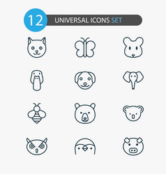 zoology icons set with penguin owl bear and vector image