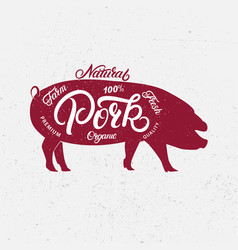 pig silhouette and hand written lettering words vector image