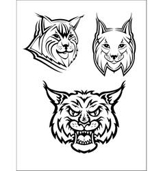 Wild bobcat or lynx mascots vector image vector image