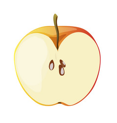 half of red apple in a cartoon style vector image