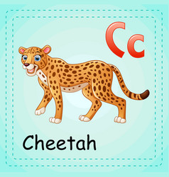 animals alphabet c is for cheetah vector image