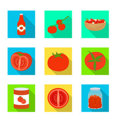 design vegetable and delicious icon set vector image