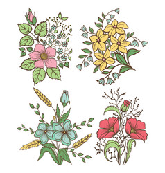flowers set colorful floral collection vector image