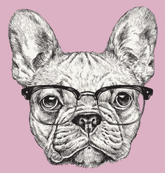 Hipster geek french bulldog vector