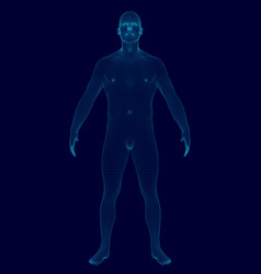wireframe model man of blue lines on a dark vector image