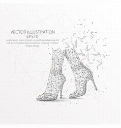 woman foots with shoes low poly wire frame on vector image