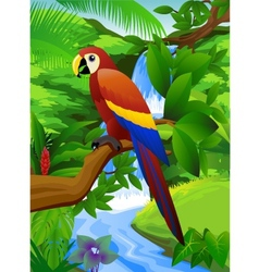 parrot and waterfall vector image vector image
