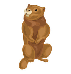 Beaver icon cartoon style vector