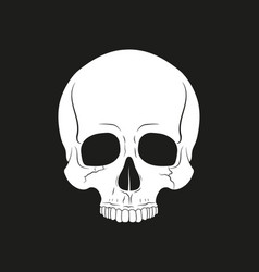 Black and white human skull without a lower jaw vector