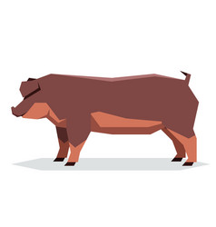 Flat geometric duroc pig vector