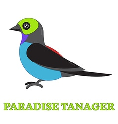 Paradise Tanager Bird Line Art Icon vector image