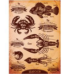 Set diagram cut carcasses seafood vector