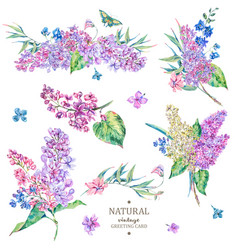 Set of vintage floral bouquet of lilac vector