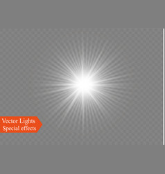 white sparks glitter special light effect vector image