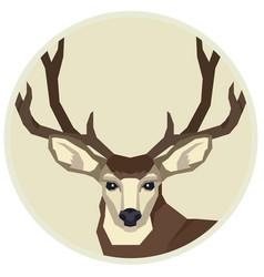 Wild animals a mule deer vector