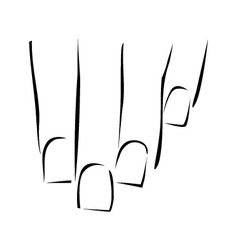 Graphic showing nail care or manicure vector