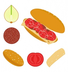 sandwich with tomatoes vector image