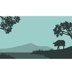 Single bison silhouette vector