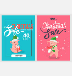 final christmas sale pigs and piglets winter hats vector image