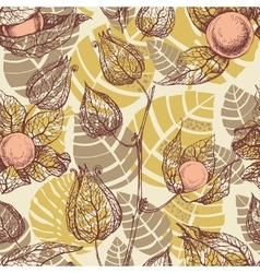 Fruits pattern physalis background vector