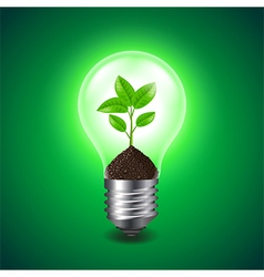 Growing sprout inside the light bulb vector image