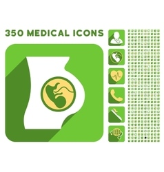 Pregnancy Anatomy Icon and Medical Longshadow Icon vector image