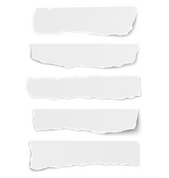 Set of elongated tattered paper scraps isolated vector