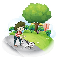 A woman and her puppy at the street vector image
