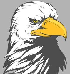 Bald Eagle Head Cartoon vector image vector image