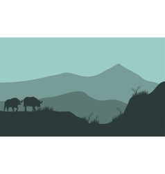 Scenery bison silhouette in hills vector image
