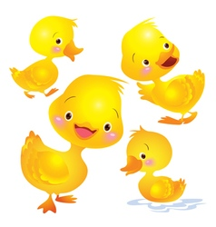 Cute duck yellow vector image