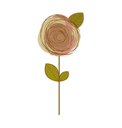 sketch of pink rose in white background vector image vector image