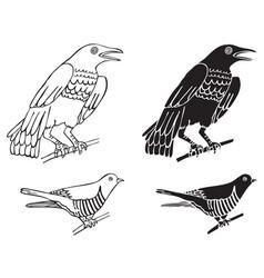 Birds crows and cuckoo vector