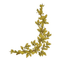 Gold Oak branch vector image