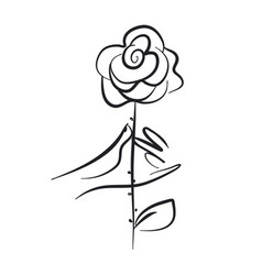 hand holding rose hand drawn vector image