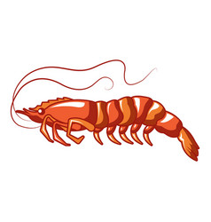 long shrimp icon cartoon style vector image