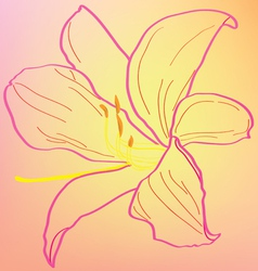 Silhouette of an abstract pink lily vector