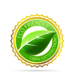 gold eco friendly tag vector image