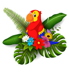 cartoon parrot with tropical flower vector image