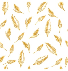 Hand drawn seamless pattern with ears of wheat vector image