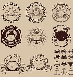 Set of the crab meat labels emblems and design vector image vector image